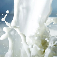 products_milk